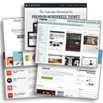 Tips voor het selecteren van WordPress Themes voor een professionele vormgeving van jouw blog